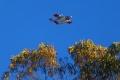 N414DF, OV-10A Bronco, Bodega Fire 2010